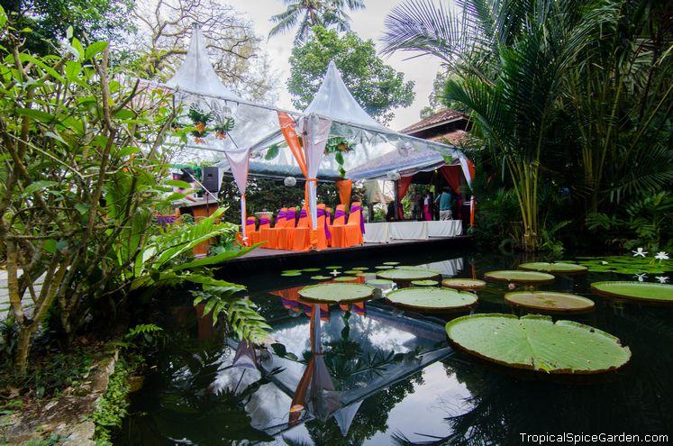 The Water Garden